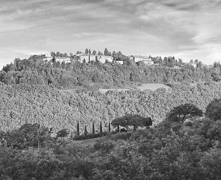 7_Castiglioncello-del-Trinoro