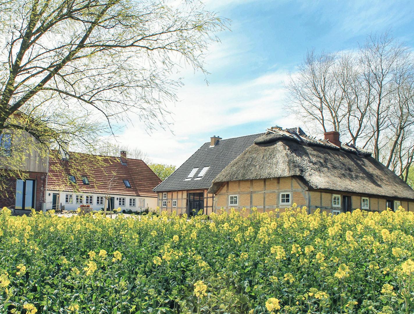 ostseehof_langfeld_ferienhaus_hofansicht_nord-ost@2